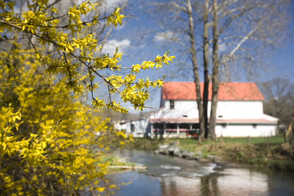 Spring on Dutch Creek_blog
