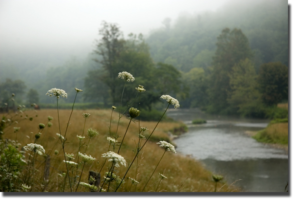 Watauga_river_blog