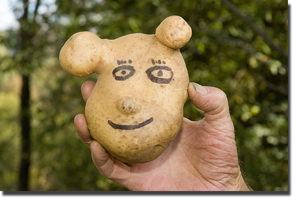If_shreck_were_a_spud