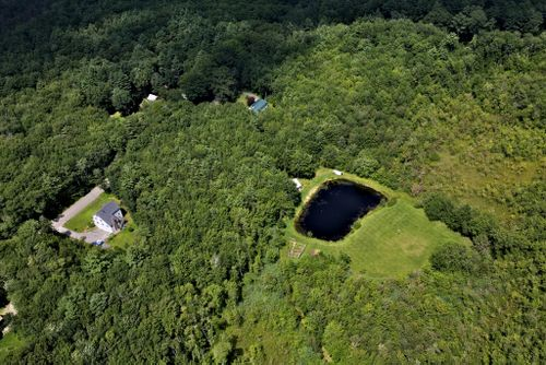 Amy's house (green roof) and pond!