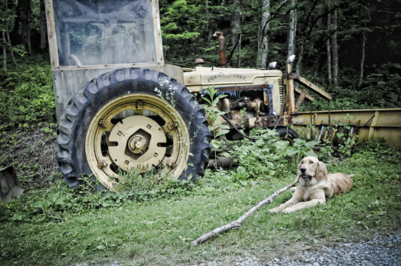 Annie, stick, and the Farmall